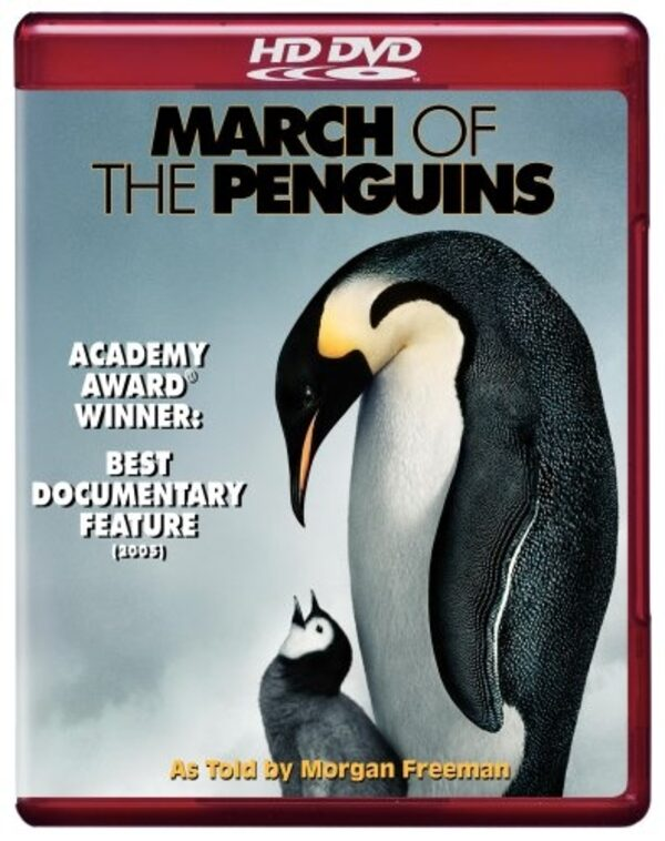 March of the Penguins HD-DVD Bild