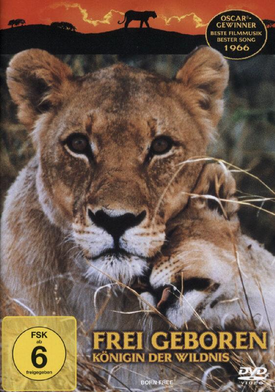 Frei geboren - Königin der Wildnis DVD Bild