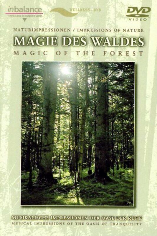 Magie des Waldes DVD Bild