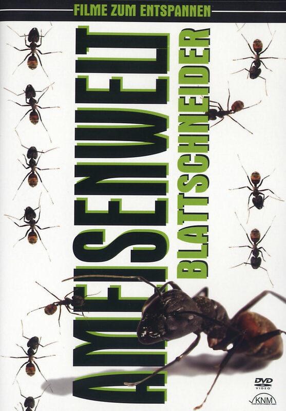 Ameisenwelt - Blattschneider DVD Bild
