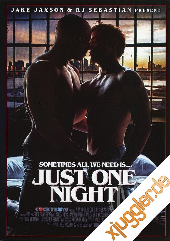Just One Night Gay DVD Bild