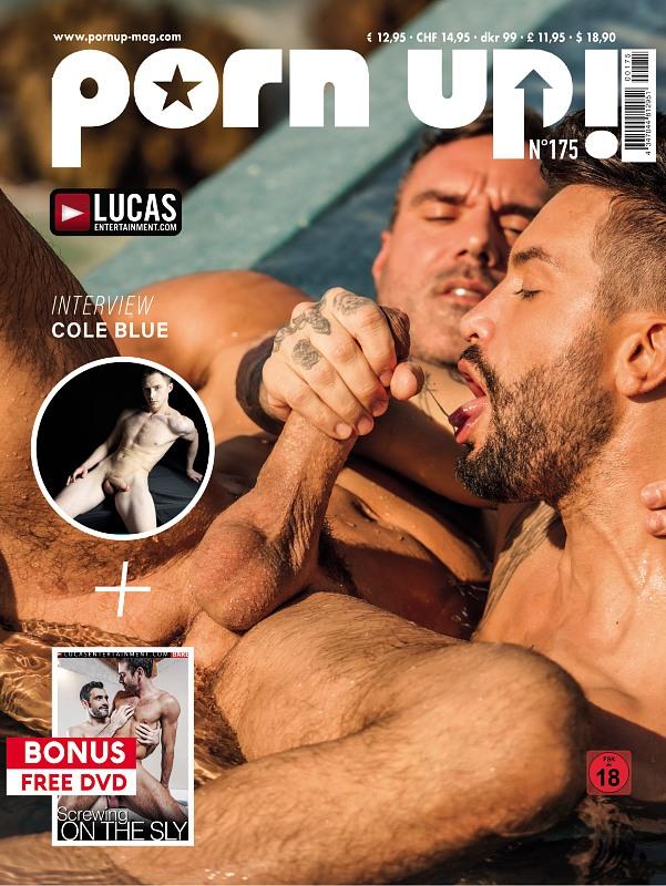 Porn Up 175 + DVD Gay Buch / Magazin Bild